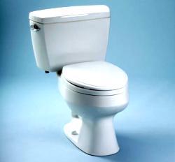 Che ti ridi marzo 2012 - Cacca nel bagno ...